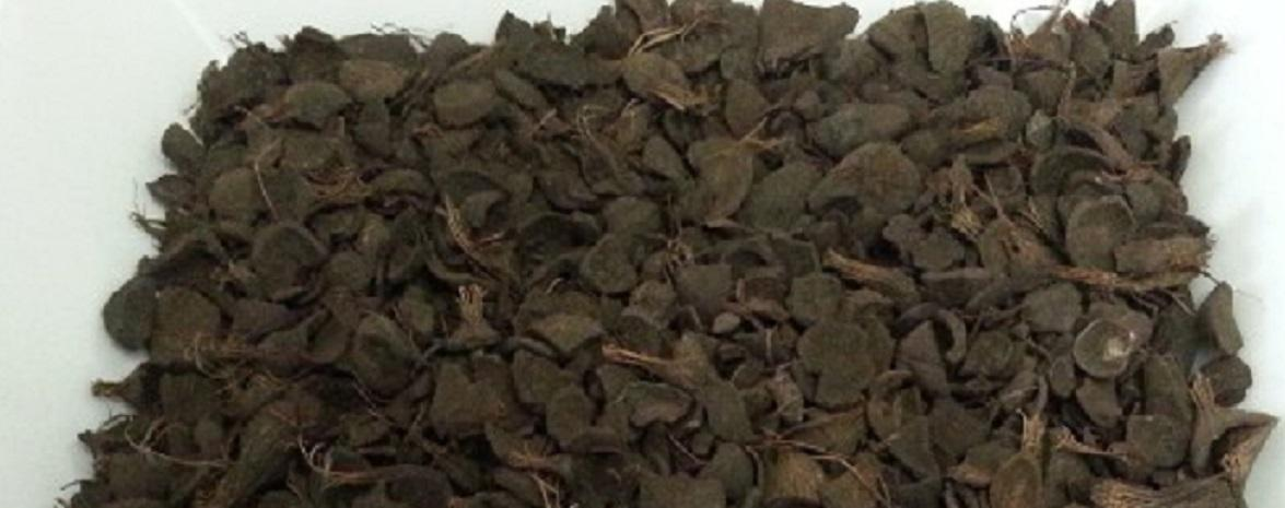 Palm Kernel Shell Biomass