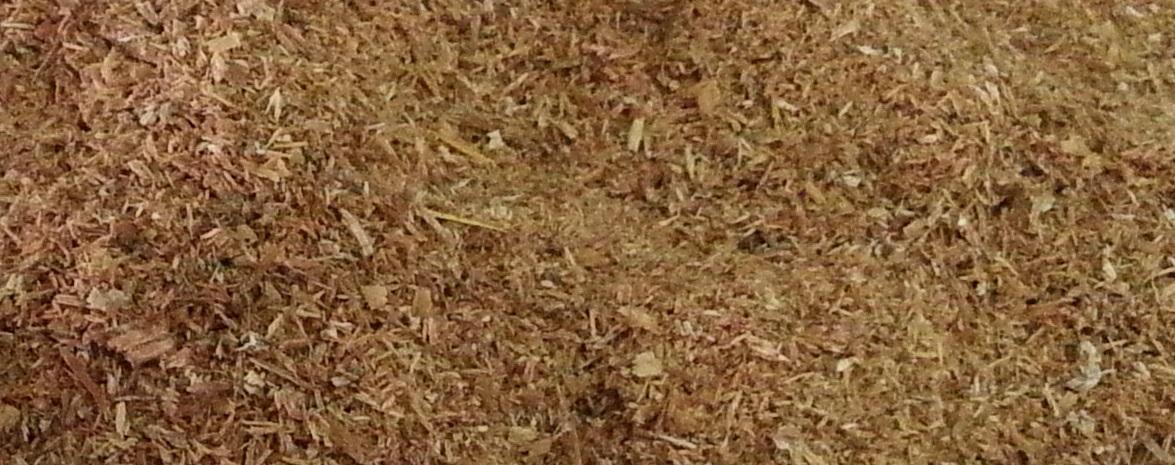 Sawdust Biomass